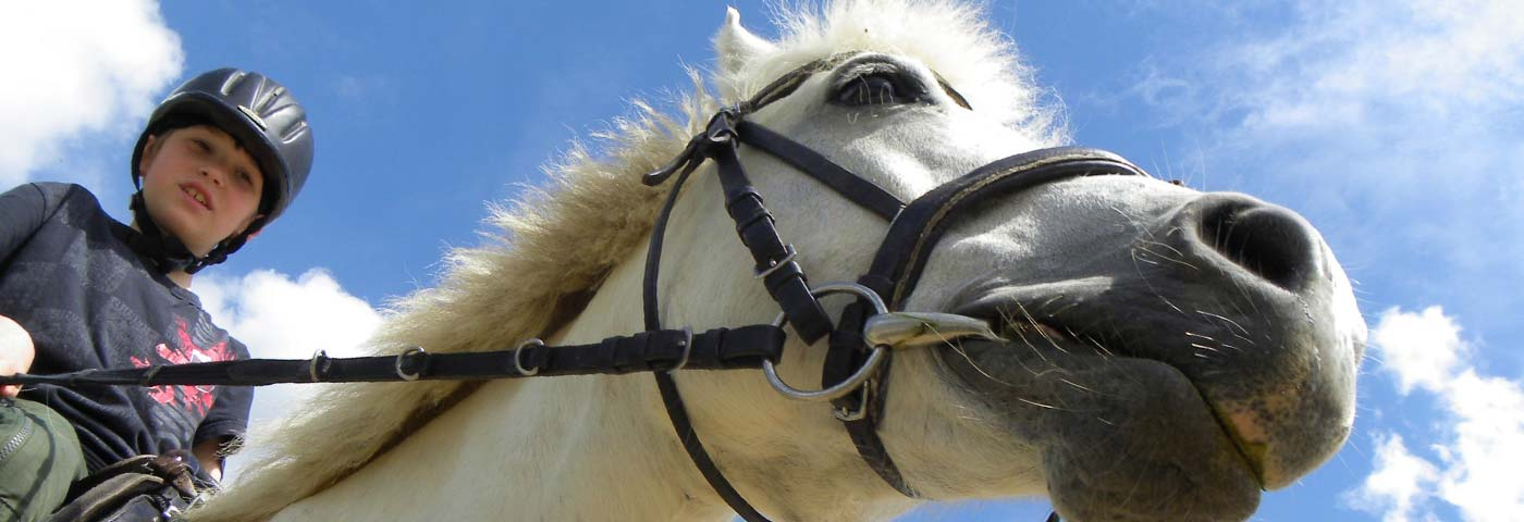 Reiterlebnisse am Ponyhof Nachbar