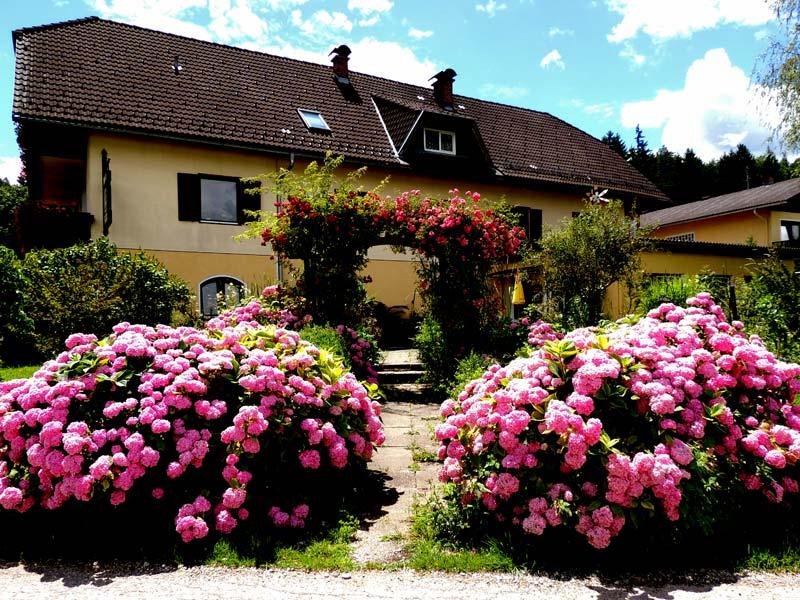 Ponyhof Nachbar mit Blumen